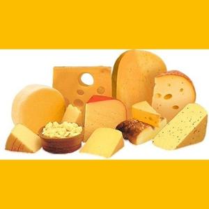 Закваски для сыра